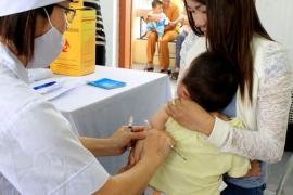 Hà Nội cảnh báo gia tăng bệnh viêm não Nhật Bản